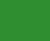 Logo of Raisio
