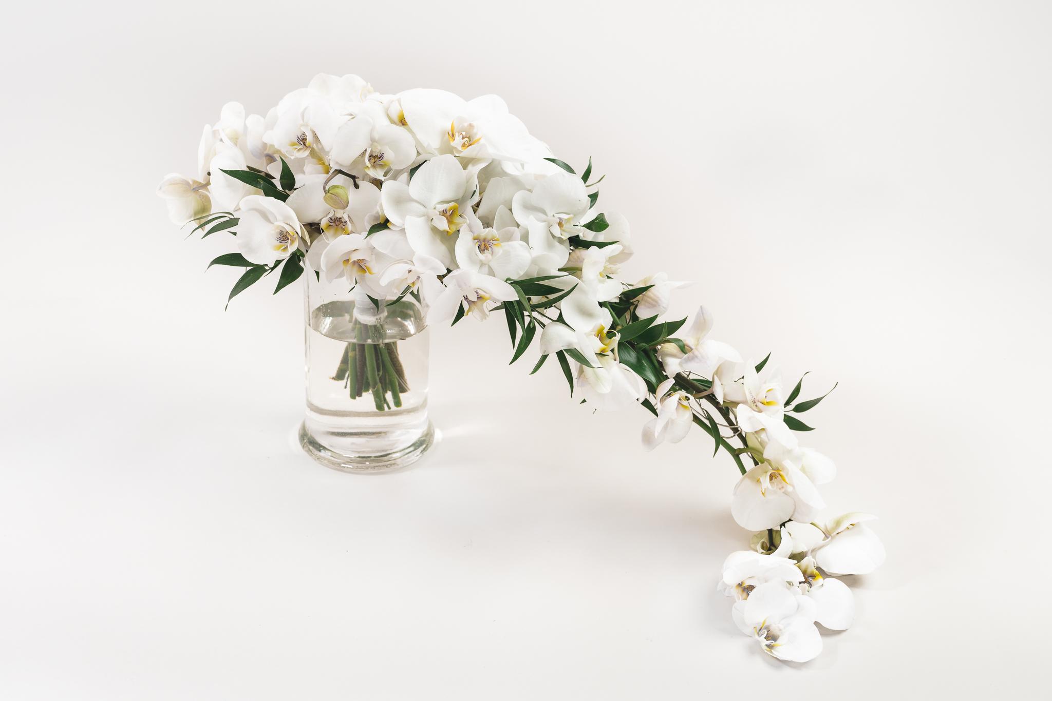 Orkidea, alk. 200€